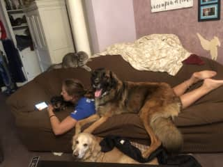 Brigitte is always in the mood for couch cuddles with all the animals.