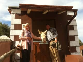 Us at a local Donkey Sanctuary