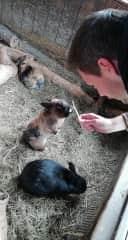 When we meet new friends ;-)