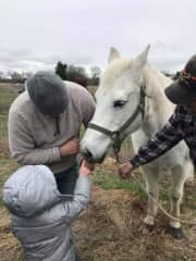 Kevin teaching our grandson about horses