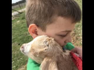 We LOVE goats too!