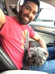 driving friend's pet arround