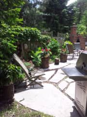 our side yard in the sun