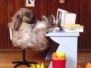 Me at my desk