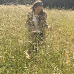 Frolicking in the grasses of Northern California