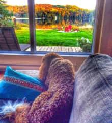 Tina relaxing...