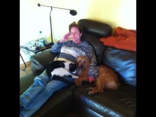 Alle Tiere kuscheln am liebsten mit mir