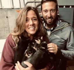 Brand new kittens