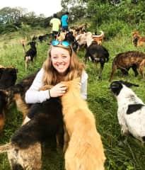Kersti at Territorio de Zaguates dog sanctuary in Costa Rica
