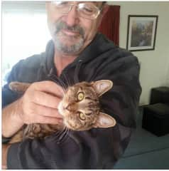 Me with my tabby cat Dory