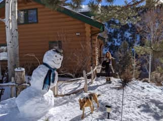 Time for a winter wonderland walk