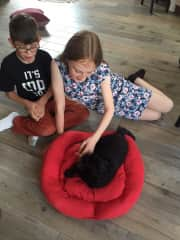 Francis with the grands in his new bed we made for him