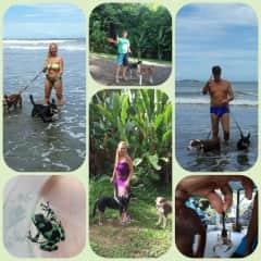 COSTA RICA JUNTO CON CARAMELO Y TEDDY