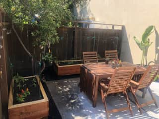Outdoor private backyard with a small garden (tomatoes, cucumbers, green beans, lettuce, strawberries, and peppers).