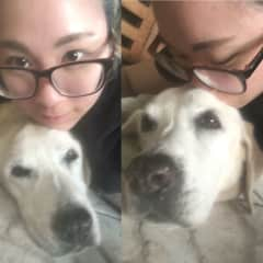 Our dogs found me annoying but I am definitely capable of respecting personal space, totally!