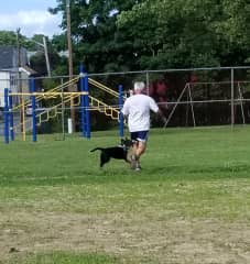 Tim and his dog friend getting some running in in the park.