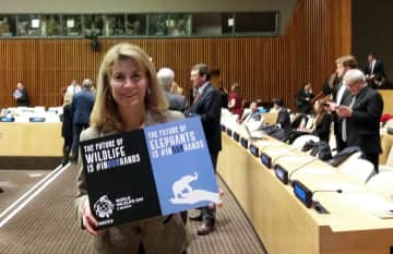 Wildlife Conservation - UN World Wildlife Day NY