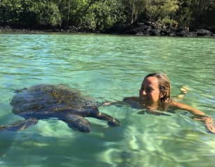 me swimming with turtles in Hawaii