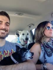 Road tripping with my mother's dogs