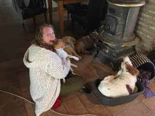 Dog sitting 10 rescue dogs in Spain