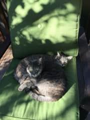 Lulu and Dottie