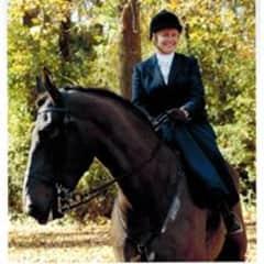 Gandolf (and me side saddle)