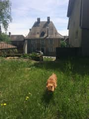 Stups and the house