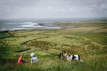 Off lead hiking {Ireland}