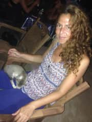 kitten in Kudlee Beach in India, comforted me on my first night there <3