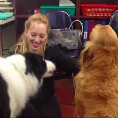 Me and some of the dogs at the animal training/behaviour centre I volunteered in for 4 years.