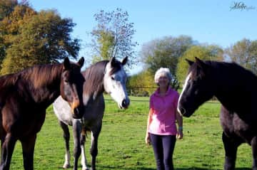 Me and the three horses