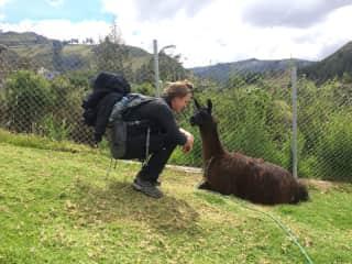 Elizabeth with Llama