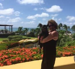 Having fun with Khaleesi, a French Bulldog, in Punta de Mita Mexico. September 2017.