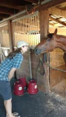 Diane and handsome horse friend