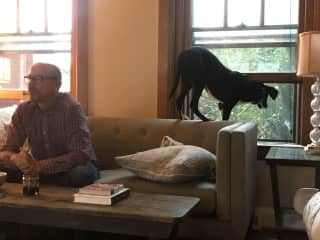 My husband watching the game and Louis V keeping track of the neighborhood!