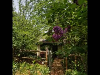 Lilacs, iris, and daffodils abound in the backyard in the spring.  Very comfortable outside seating and table for meals.