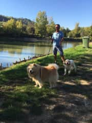 House- and dog sitting in Tuscany/Italy
