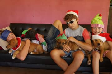 Christmas 2014 with sons Eli, Ruben and Asher when we were fostering 4 puppies (2 of whom we kept!  foster fails!)