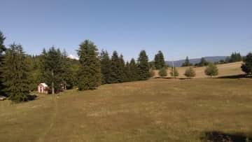 Pasture, barn and Mt. Hood