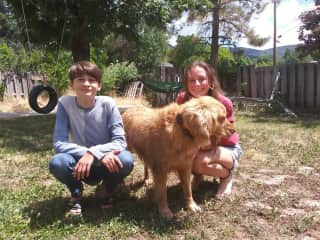 Sam and Laura with our Golden Retriever RIGI. They love her more anything. They started an Instagram page for the dog a few years ago: rigithedog