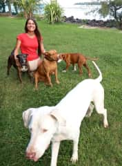 Petra with Lady, Tuki, Gorda and Rex in Moorea, French Polynesia - Dog and House Sitting in February 2018
