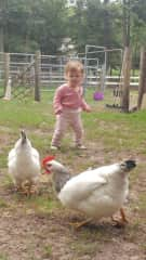 Jasmine dancing with the chickens