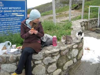 Trying not to pet the cats in Greece (I failed right after I finished that sandwich . . . )