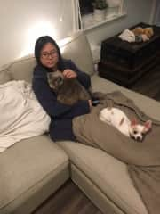 Jo with Tilly and Chewy in Collingwood