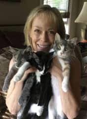 My foster kittens. So sweet!