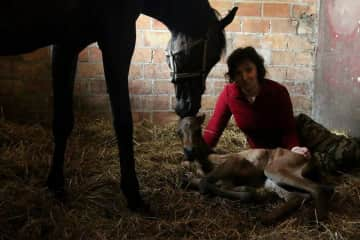 Newborn filly after long fight for her life :-)
