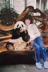 I love seeing animals while overseas.  In the picture Dee is sitting beside a giant panda at the panda sanctuary in Chendu ,China