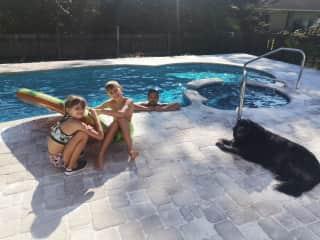Cora housesit Florida
