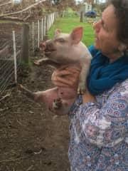 Mary Anne with a cheeky piglet