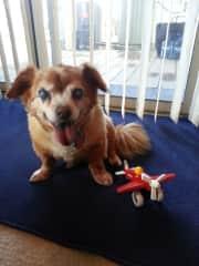 Eli with toy
